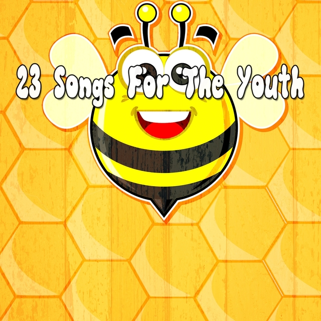 Couverture de 23 Songs for the Youth