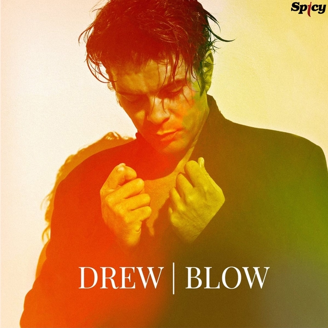 Couverture de Blow