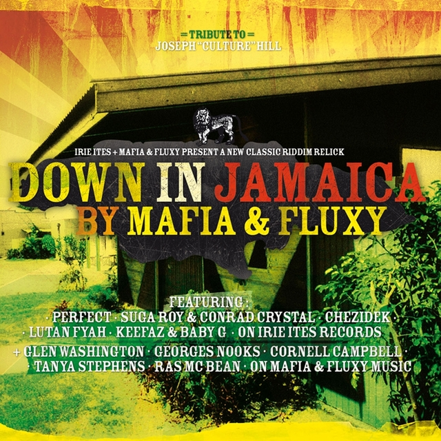 Couverture de Down In Jamaica Riddim