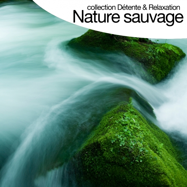 Nature sauvage - Sounds of Nature