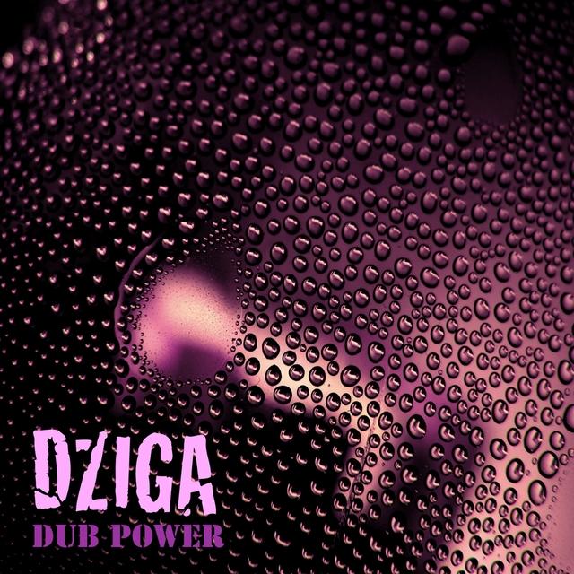 Couverture de Dub Power