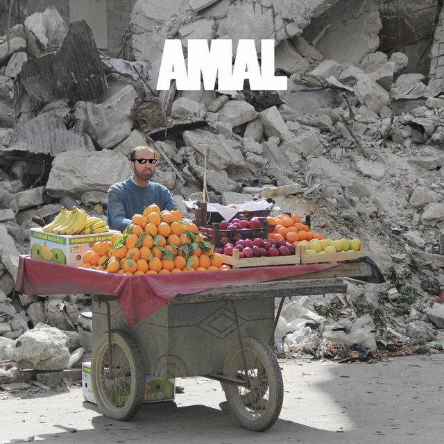 Couverture de Amal
