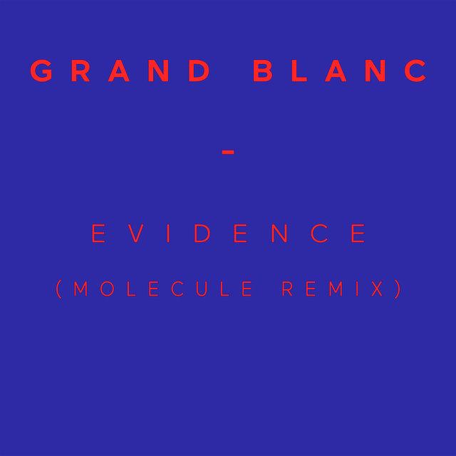 Evidence (Molecule Remix) - Single