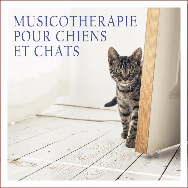 Couverture de Musicothérapie pour chiens et chats