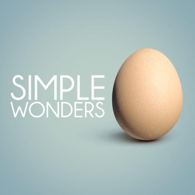Simple Wonders
