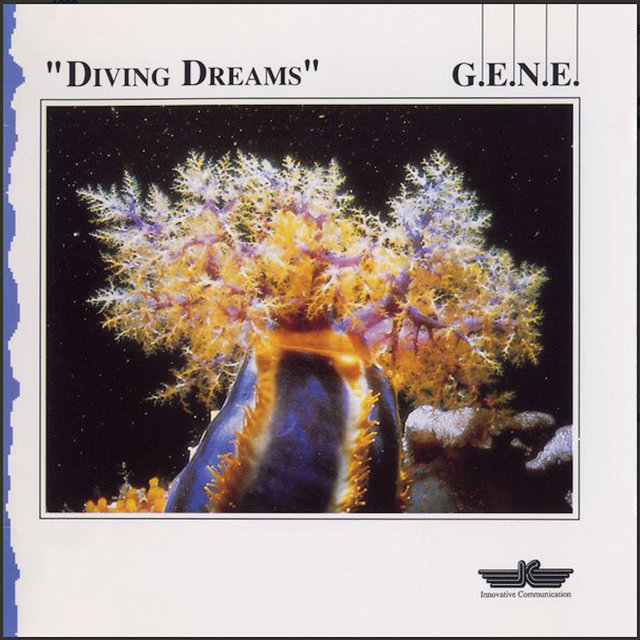 Diving Dreams