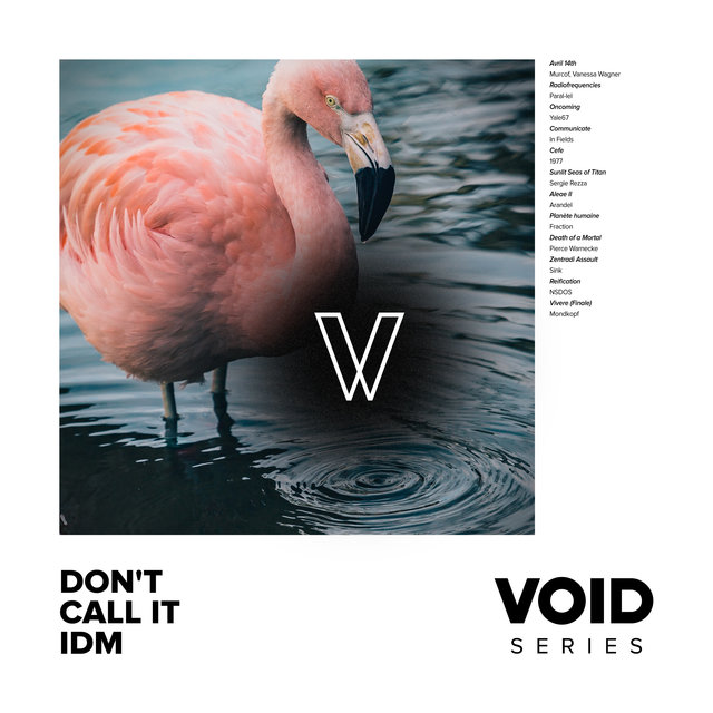 Couverture de VOID: Don't Call It IDM