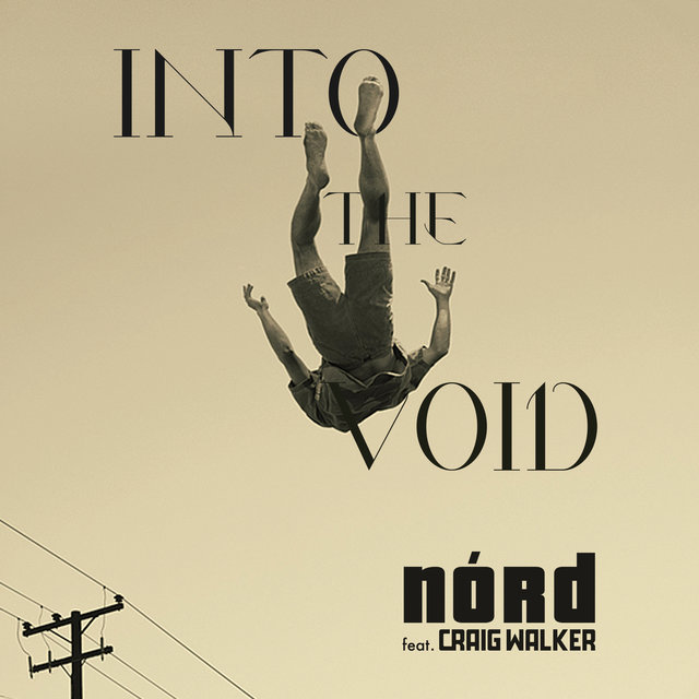 Couverture de Into the Void