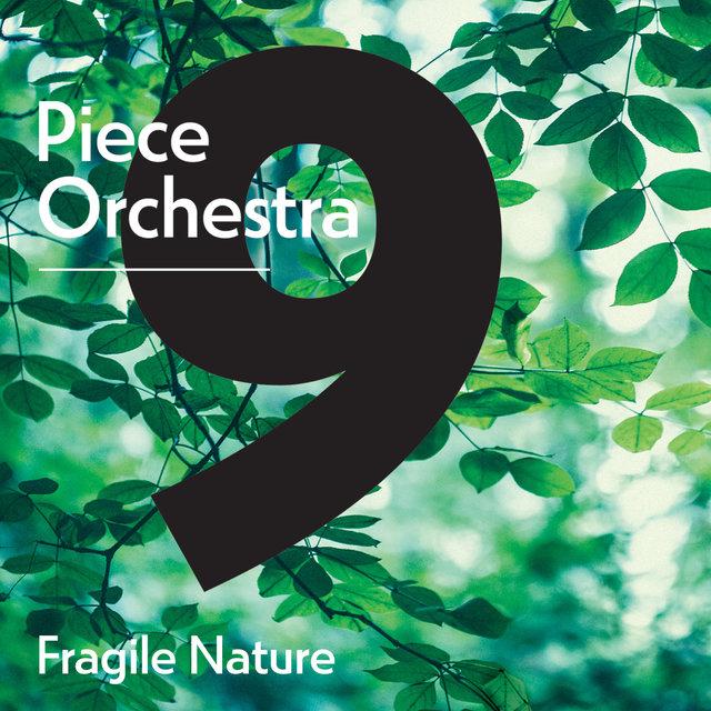 9 Piece Orchestra: Fragile Nature