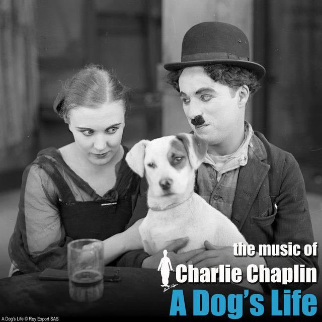 Couverture de A Dog's Life (Original Motion Picture Soundtrack)