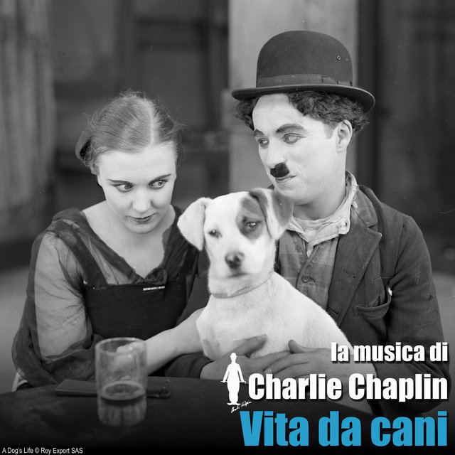 Vita da cani (Colonna sonora originale)