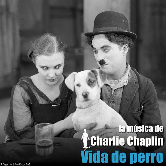 Vida de perro (Banda sonora original)