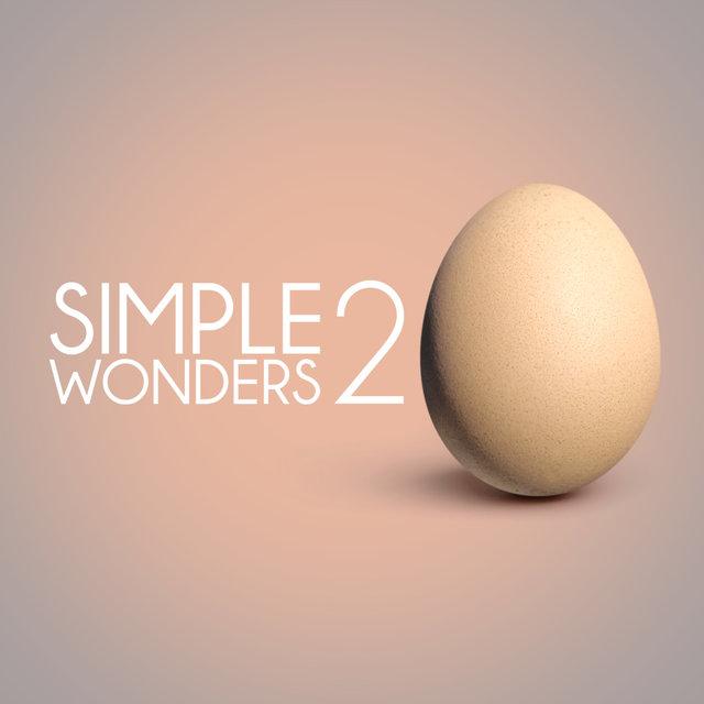 Simple Wonders 2