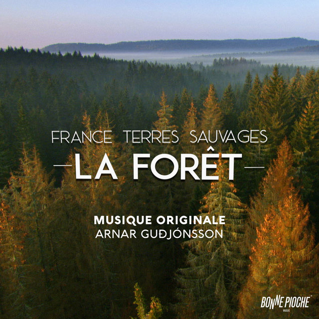 France terres sauvages: La forêt (Bande originale du film)