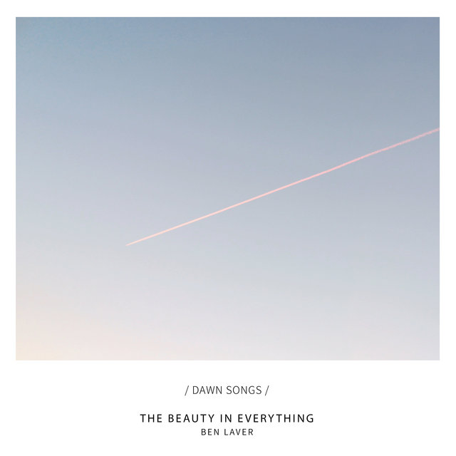 Couverture de The Beauty in Everything