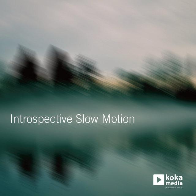 Introspective Slow Motion