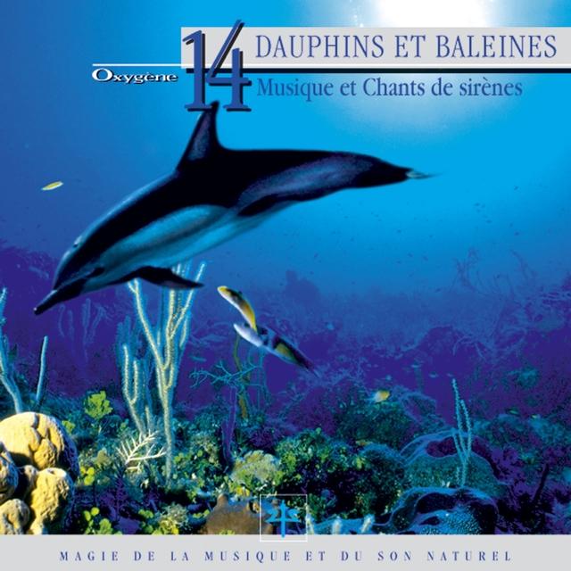 Oxygène 14 : Dauphins et baleines