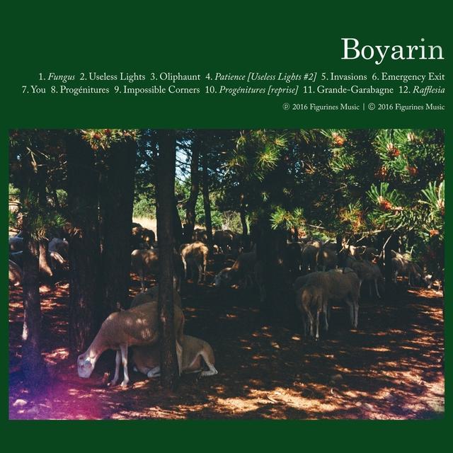 Boyarin