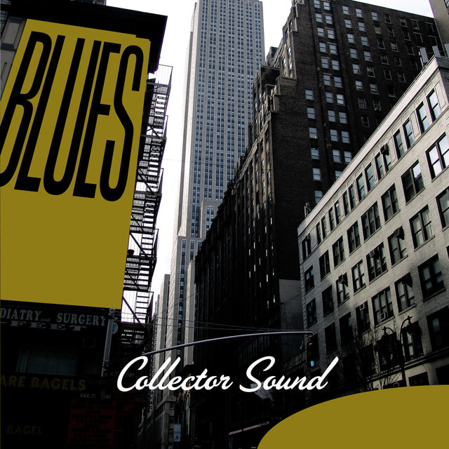 Blues Collector Sound