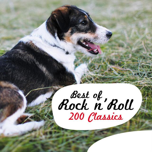 Couverture de Best of Rock N' Roll - 200 Classics