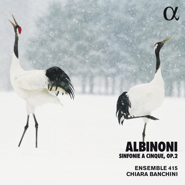 Albinoni: Sinfonie a cinque, Op. 2 (Alpha Collection)