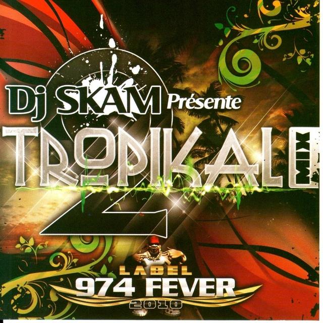 Tropical Mix 974 Fever, Vol. 2