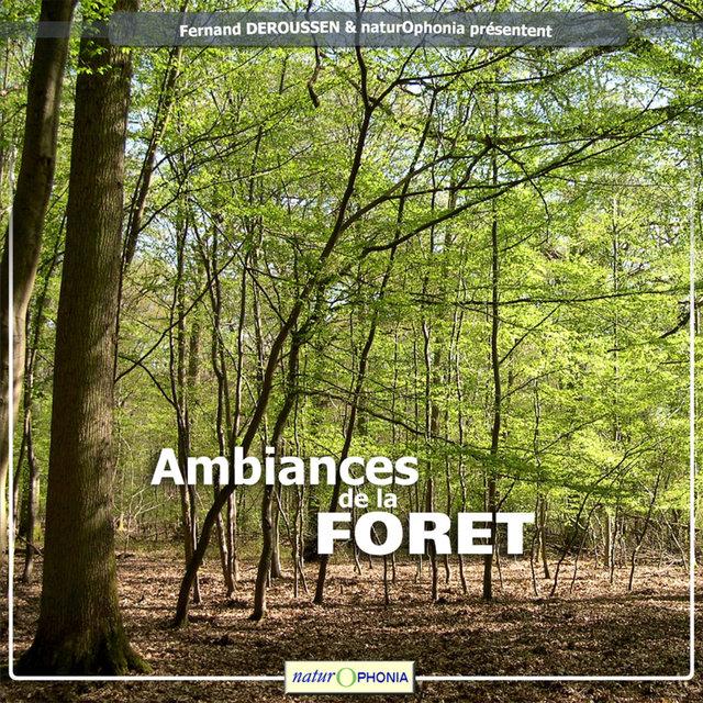 Naturophonia: Ambiances de la forêt