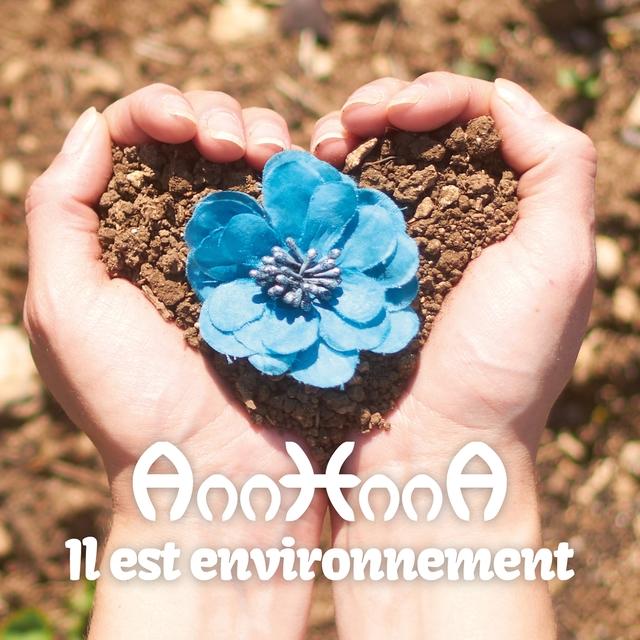 Il est environnement
