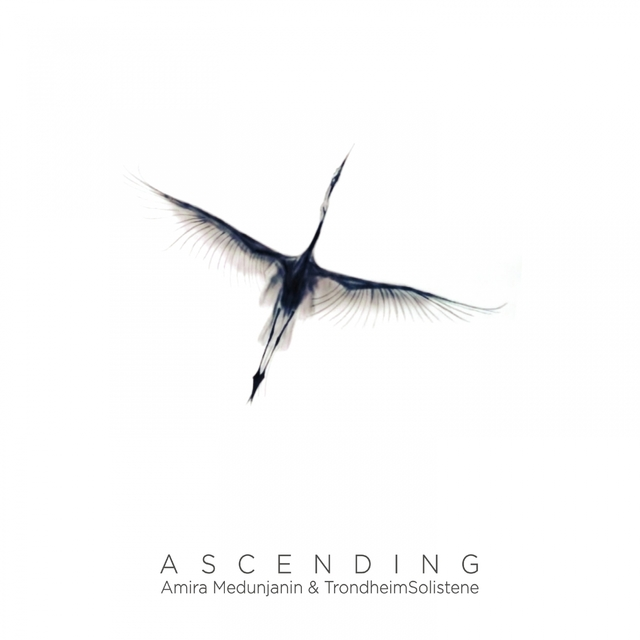 Couverture de Ascending