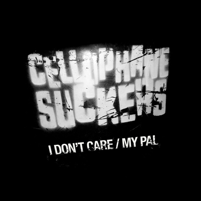 I Don't Care / My Pal