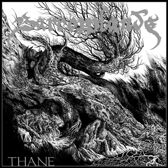 Couverture de Thane