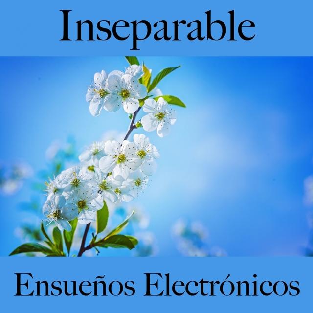 Inseparable: Ensueños Electrónicos - La Mejor Música Para El Tiempo Entre Dos