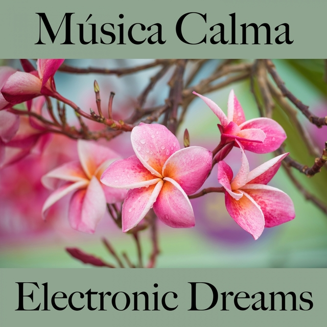 Música Calma: Electronic Dreams - Os Melhores Sons Para Relaxar