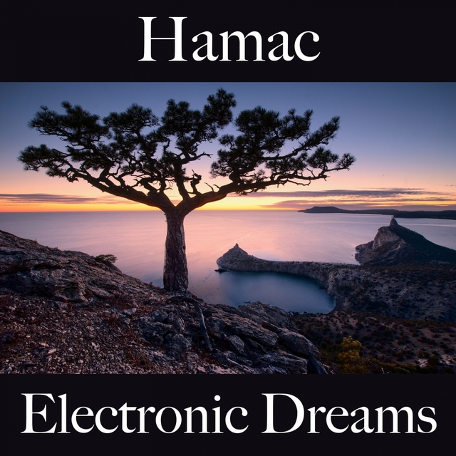 Hamac: Electronic Dreams - La Meilleure Musique Pour Se Détendre