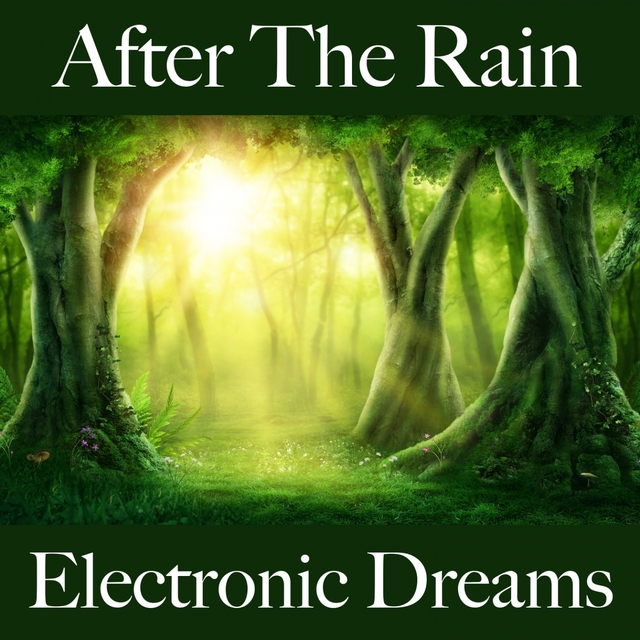 After The Rain: Electronic Dreams - The Best Music For Relaxation