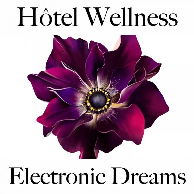 Hôtel Wellness: Electronic Dreams - Les Meilleurs Sons Pour Se Détendre