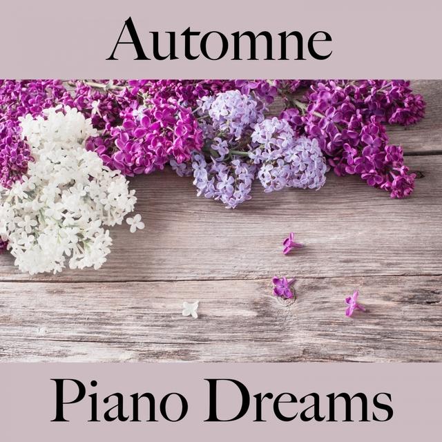 Automne: Piano Dreams - La Meilleure Musique Pour Se Détendre