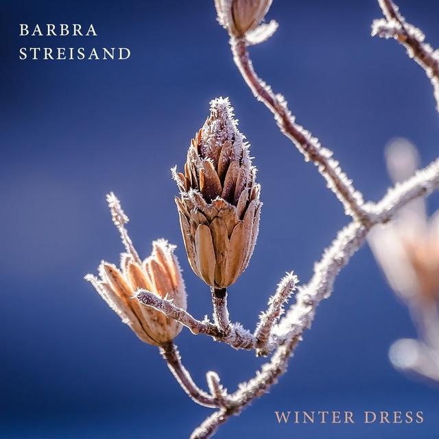 Couverture de Winter Dress