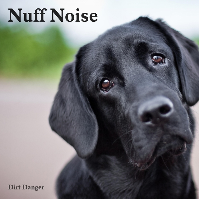 Nuff Noise