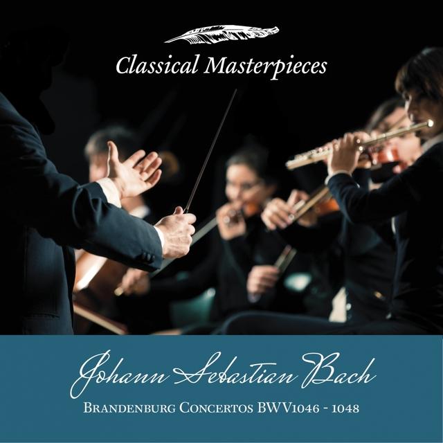 Johann Sebastian Bach: Brandenburg Concertos BWV1046-1048