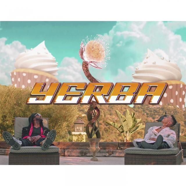 Yerba