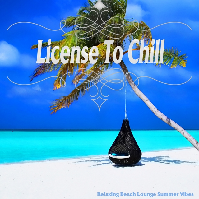 Couverture de License To Chill