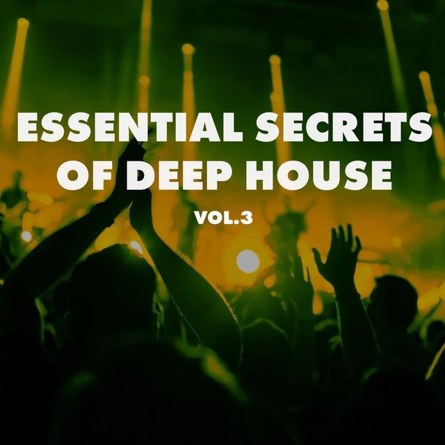 Essential Secrets of Deep House, Vol. 3