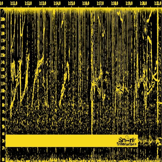 Couverture de Spectrogram