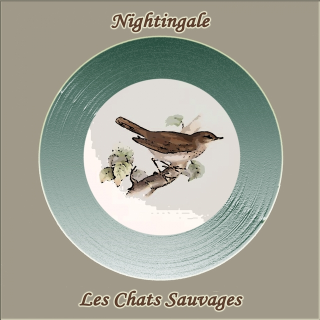 Couverture de Nightingale