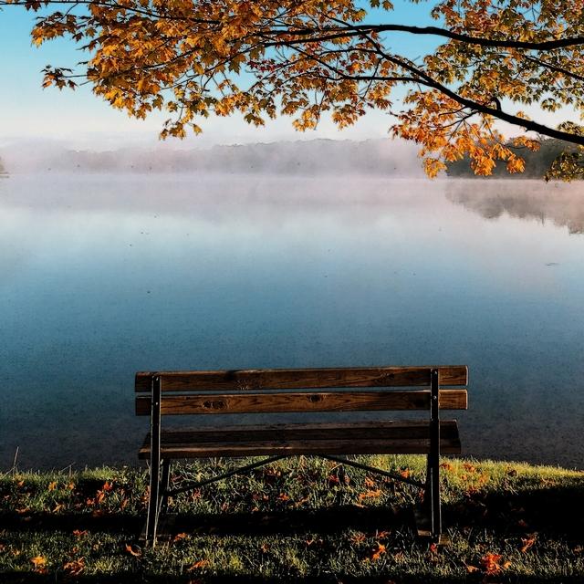 Beautiful Loneliness