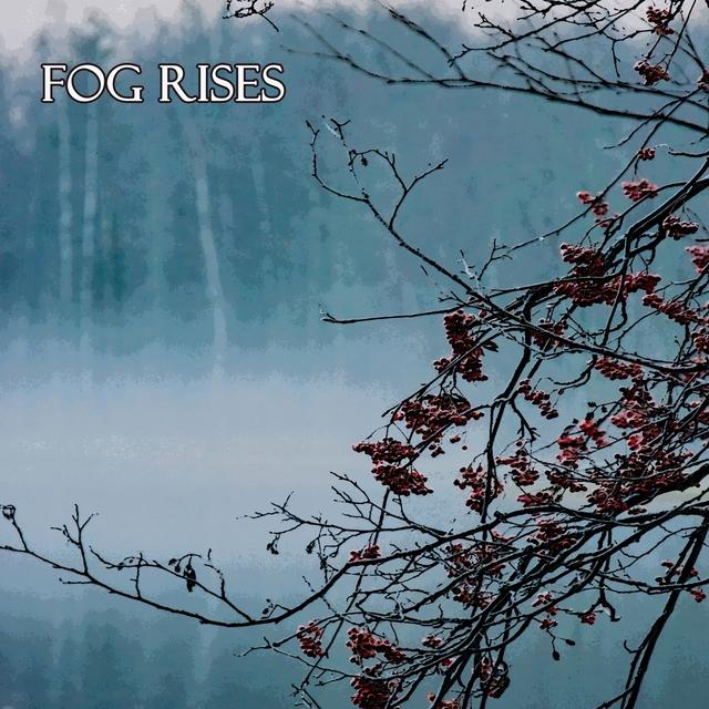 Fog Rises