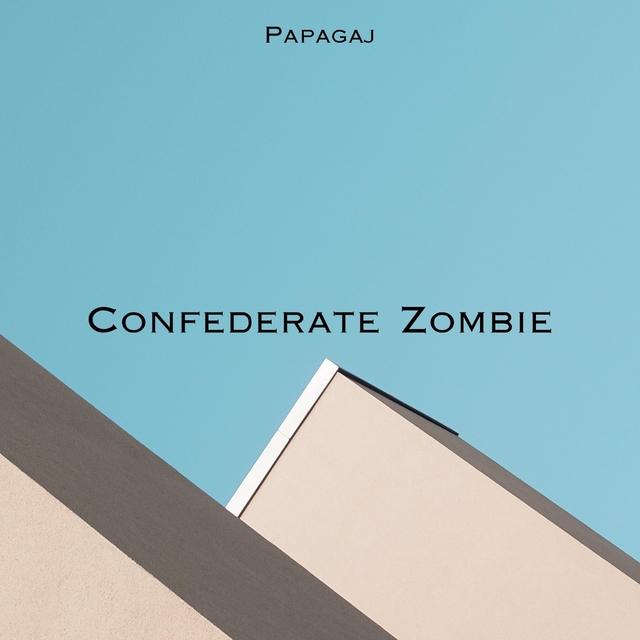 Confederate Zombie