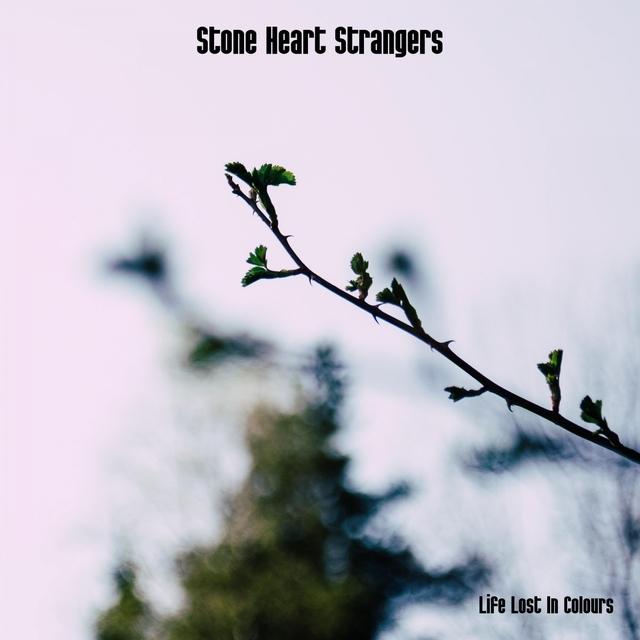 Stone Heart Strangers