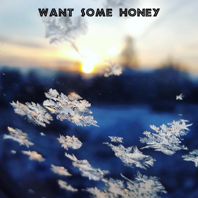 Couverture de Want Some Honey